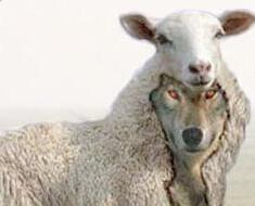Varg i fårakläder